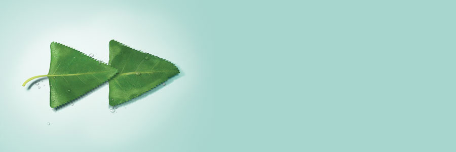 2019 APAC Graduate Programme – Loan Syndicate & Sales  (HK) profile banner profile banner