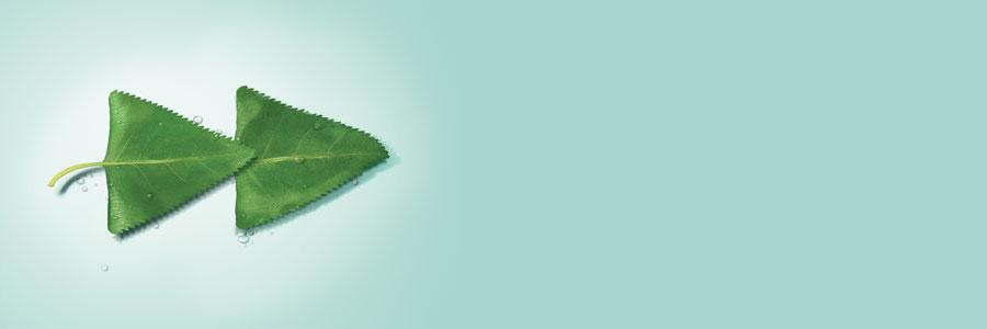 2019 APAC Graduate Programme – Global Markets (HK) profile banner profile banner