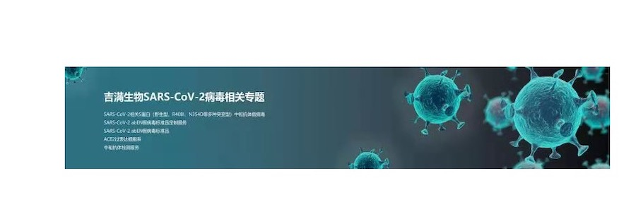 Technology Support Engineer profile banner profile banner