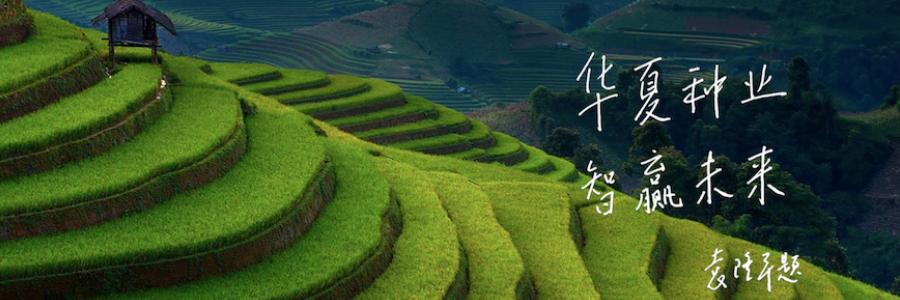 Huazhi Bio profile banner