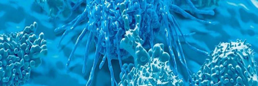 2020 Medical Technologist Intern - Microbiology profile banner profile banner