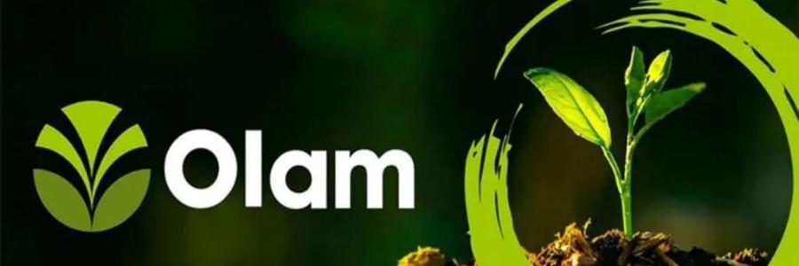 OLAM profile banner