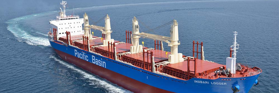 Pacific Basin Shipping Limited profile banner