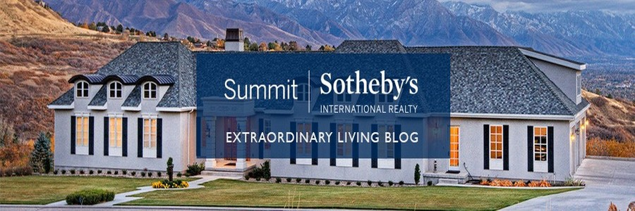 Sotheby's profile banner
