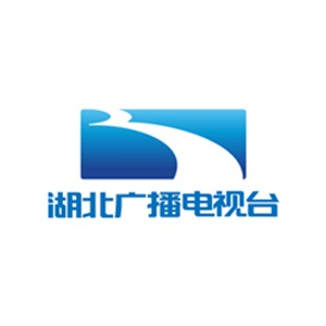 Hubei Media Group logo