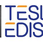 Tesla Edison logo