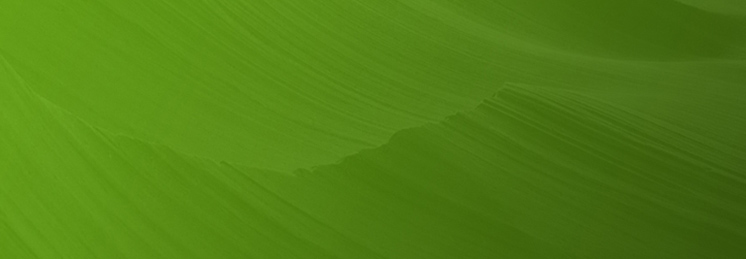 Fluor Corporation default profile banner