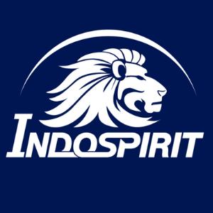 Indospirit Group logo