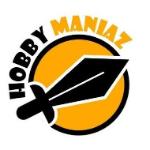 Team Hobby logo