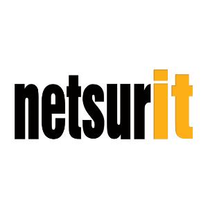 Netsurit logo