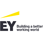 Apply for the EY 2021/22 Vacationer Program position.