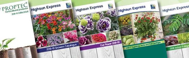 Highsun Express Seeds Pty Ltd profile banner