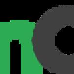 Nelson O'Neill logo