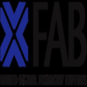 X-FAB logo