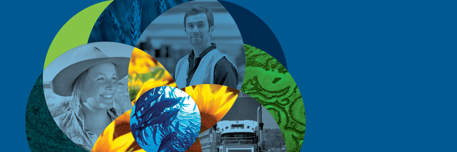 Department of Agriculture and Water Resources profile banner