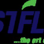 Fast Flow Systems Australia Pty Ltd logo