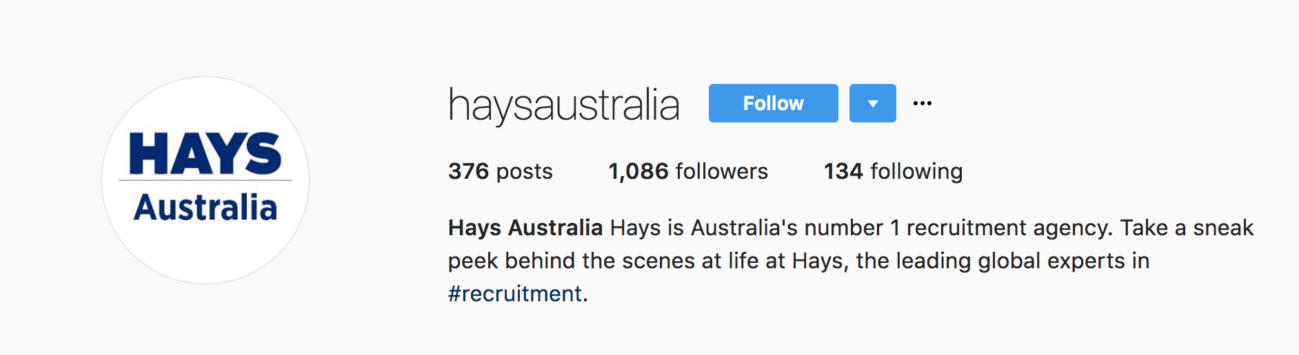 Hays Instagram