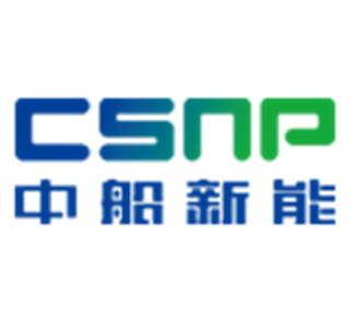 CSIC - NP logo