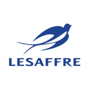 Lesaffre Management