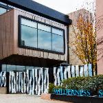 Wilderness School logo