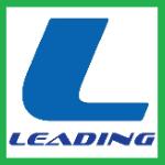 Leading IT Solutions logo