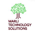 Marli Technology Solutions logo